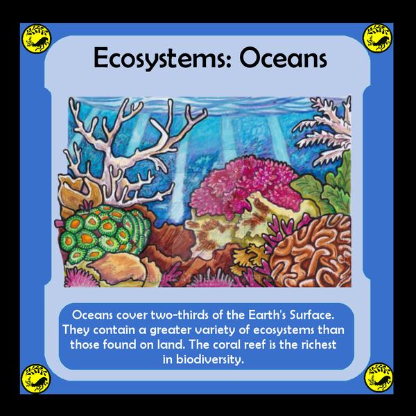 Ecosystem: Ocean by lemurkat