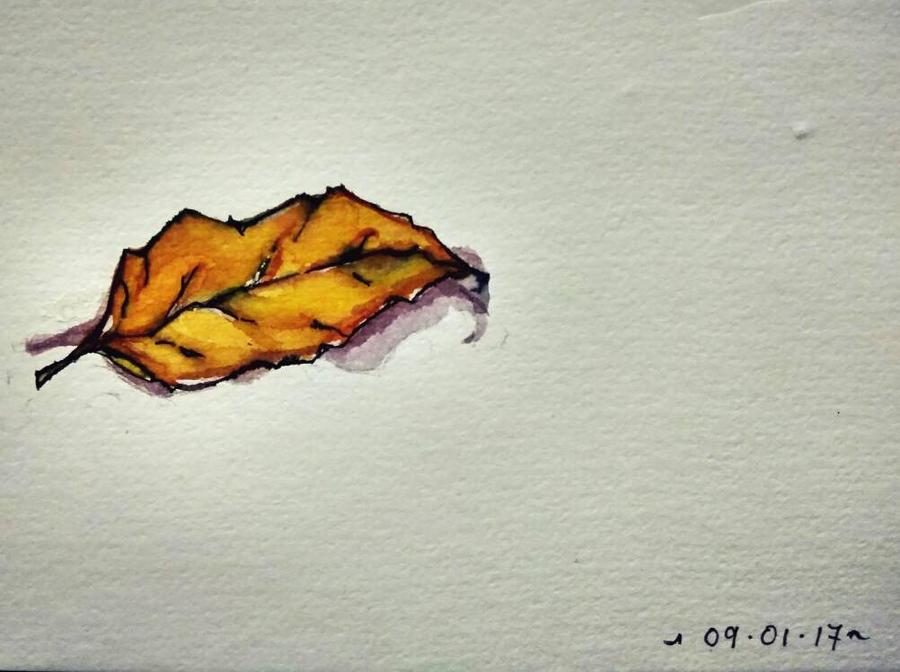 Dry leaf 090117 by caeme