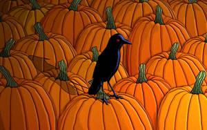 the crow by TravisLutz