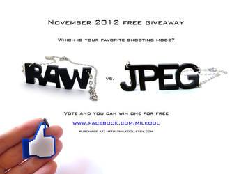 Raw vs Jpeg necklace