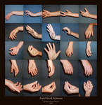 Right Hand - Reference