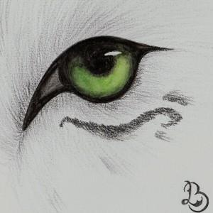 Louve--Blanche's Profile Picture