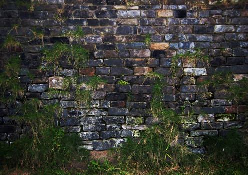 Wall with grass background