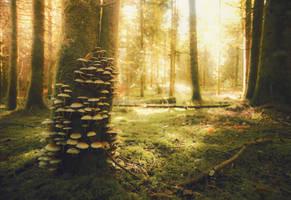 Autumn wonderland by Yggdr4zill