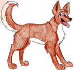 David as a Huskydogthingy