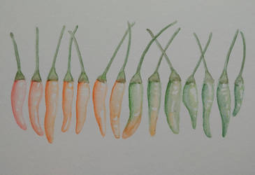 Chili peppers in watercolor by steffy0075