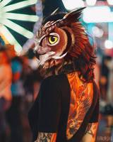Owl Face by Hakashi-Arakawa