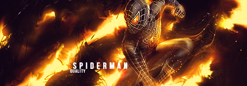 Spiderman by Quality-RB