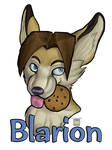 Blarion badge