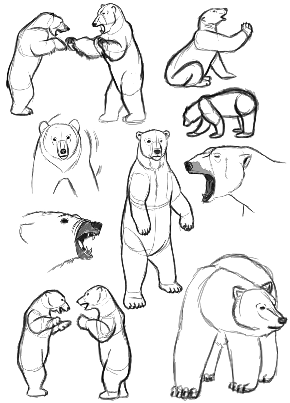angry bear standing drawing - photo #10