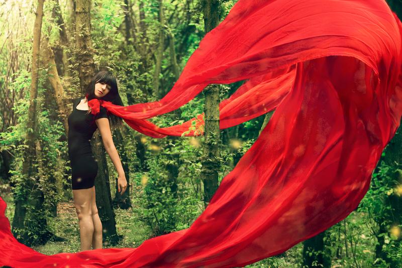Little Red by rmayani