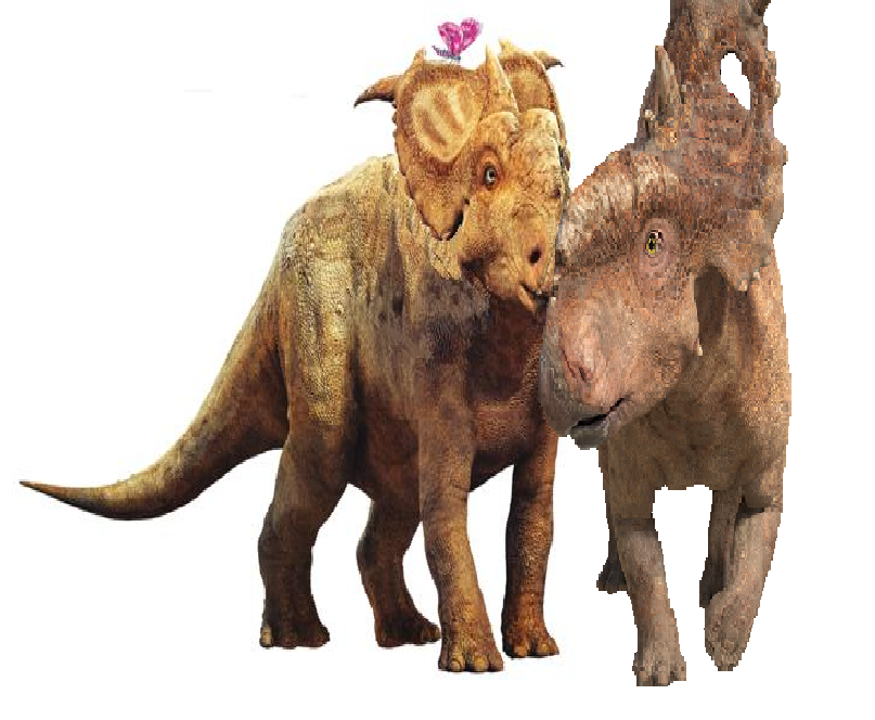 Walking With Dinosaurs Patchi Patchi x Juniper by Co...
