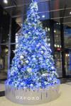 RBC Royal Bank Christmas Tree