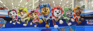 Paw Patrol Jet to the Rescue Canadian Tire Sign