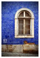 Blue Jeans by Garelito-Photos