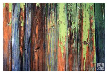 Rainbow by Garelito-Photos