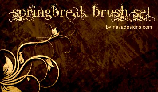 springBreak floral brush set by NayaDesigns