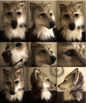 wolf mask for sale
