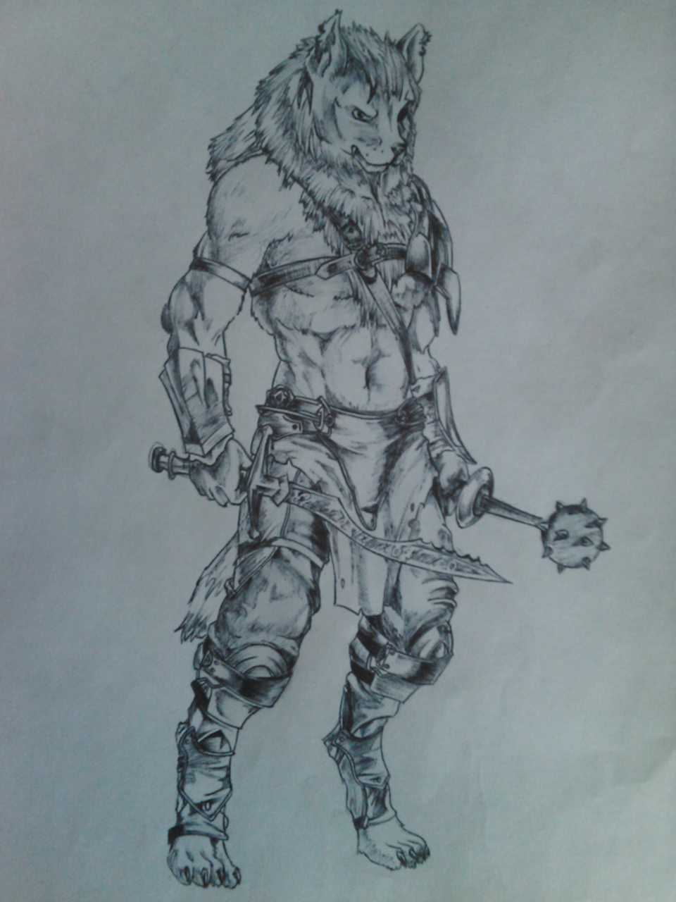 Wolf Anthro Warrior Warrior Wolf by