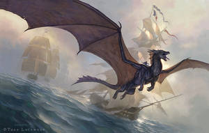 Temeraire by TLockwood