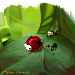Ladybird Art by TiphyM
