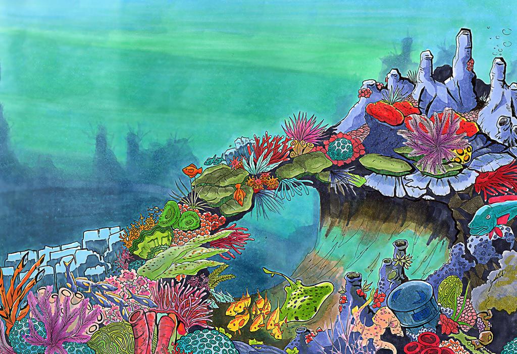 Deep Sea Coral Reef by dodobirdz2 on DeviantArt