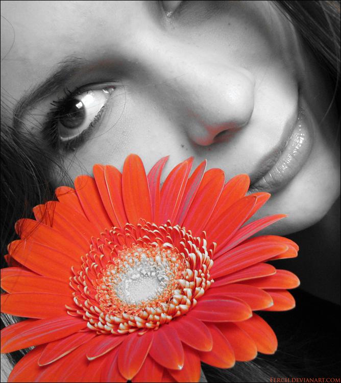 Crno-bijelo u boji - Page 38 Flower_by_Ferch