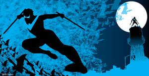 Nightwing Night Fighter by Tom Kelly