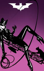 Catwoman Me-yow by Tom Kelly