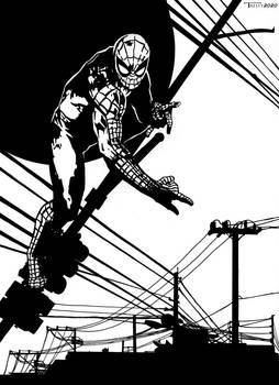 Spiderman City Slinger By Tom kelly