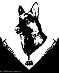 Ace Bat Hound by Tom Kelly