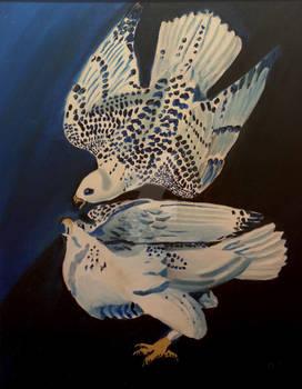 White Hawks 1222019