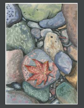 Red Leaf on Rocks Framed