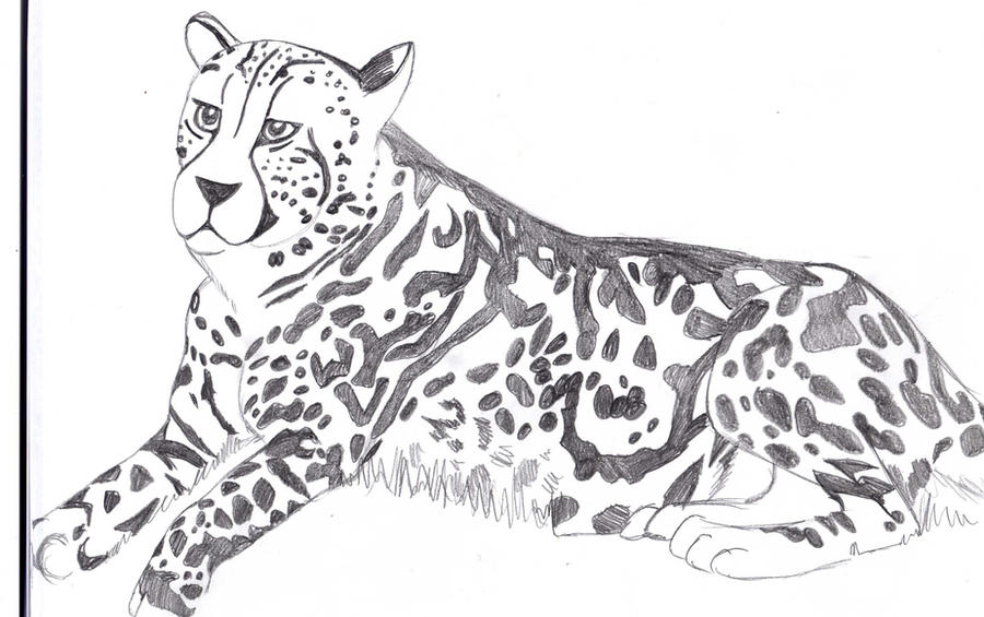 Red Cheetah Mutation