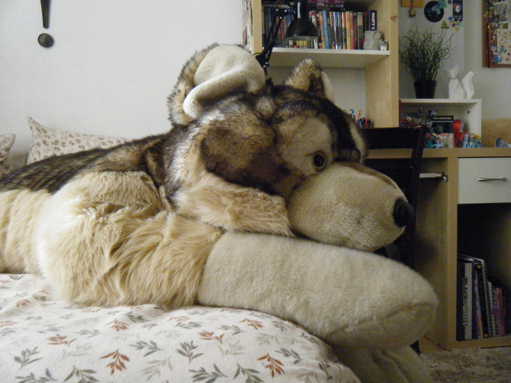 giant jaag wolf plush 03 by shadoweoncollections on deviantart. Black Bedroom Furniture Sets. Home Design Ideas