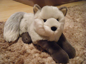 Macy's/Chosun Arctic Fox by ShadoweonCollections