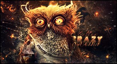 Crazy Owl by HybridonGFX