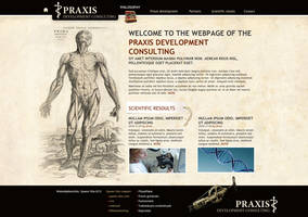 praxisDS site by arkantal