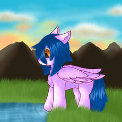 Pony staring at water