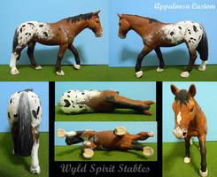 Appaloosa Custom by Wyld-Spirit
