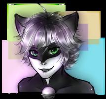 chat noir by monochromias