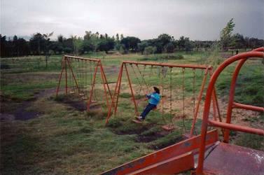 Woman on Swing2