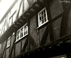 Little Shambles by clauds27