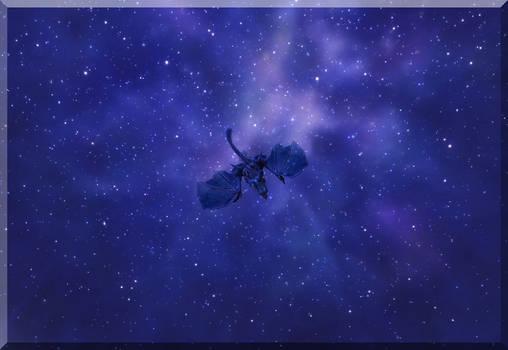 - Stars, stars and stars! -