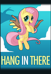 Hang In There Fluttershy
