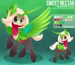 Hummingbird Pegasus OC Commission