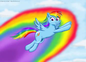 Rainbow dash by angela808