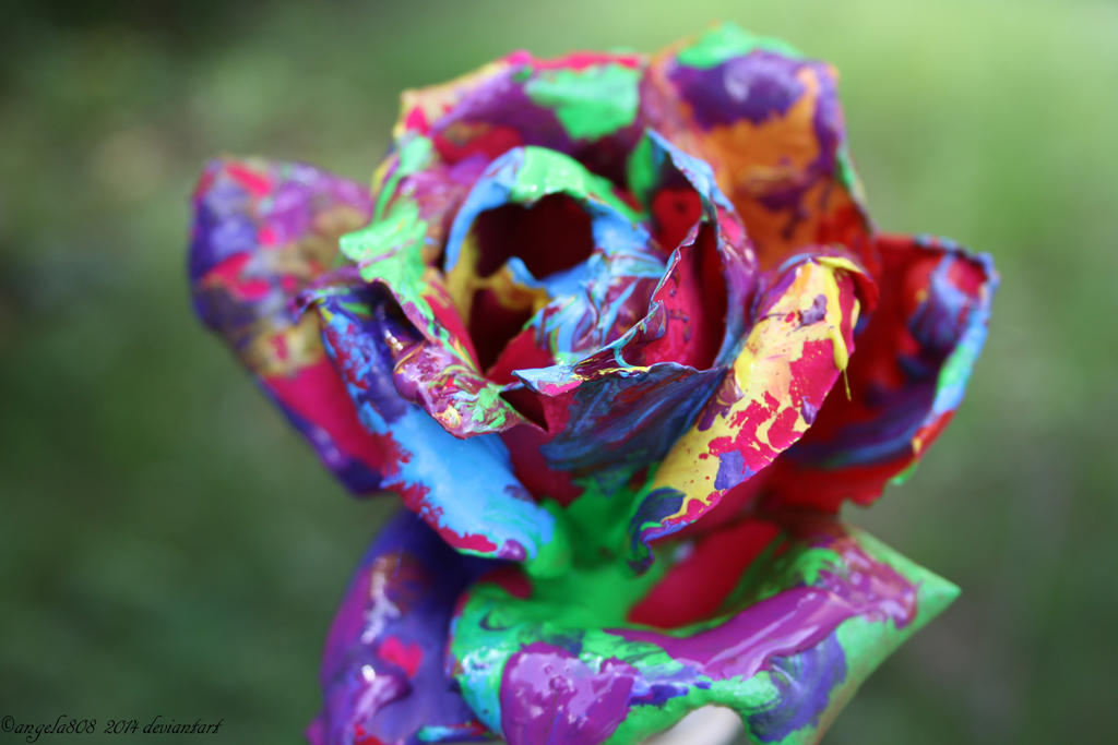 Rainbow rose by angela808 on deviantart for How to make a multicolored rose