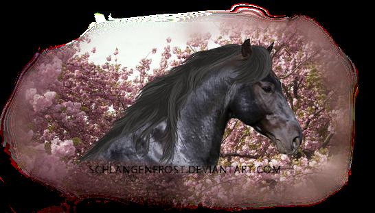 Cherry Horse by Schlangenfrost