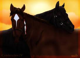 War Horse by Cynderclaw29
